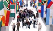 иммиграция за границу
